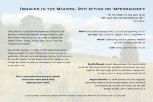 Poster for Drawing in the Meadow workshop
